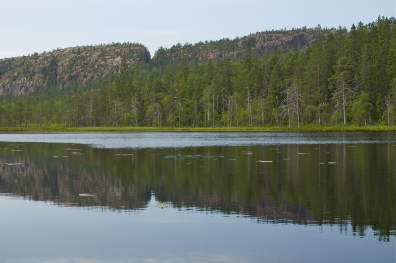 fran-skuleskogens-nationalpark